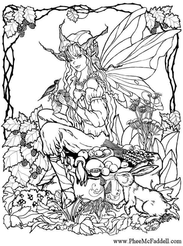M larbild lva i skogen bild 6906 - Manga coloriage elfe ...