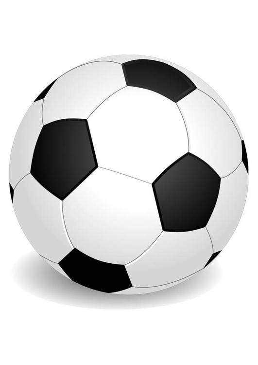 Bild Ball