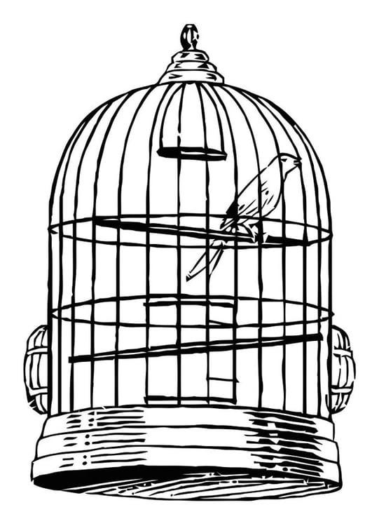 Bildresultat för fågel i bur