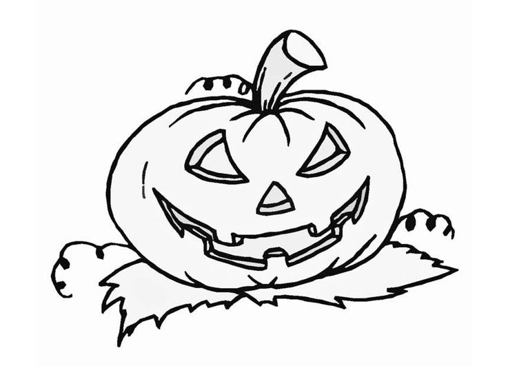 M 229 Larbild Halloween Pumpa Bild 8589