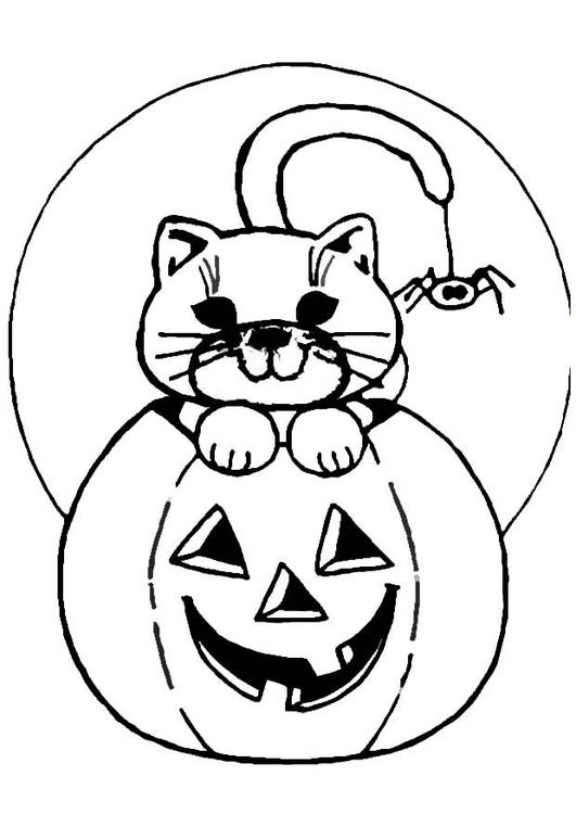 Målarbild halloween-pumpa och katt - Bild 8618.