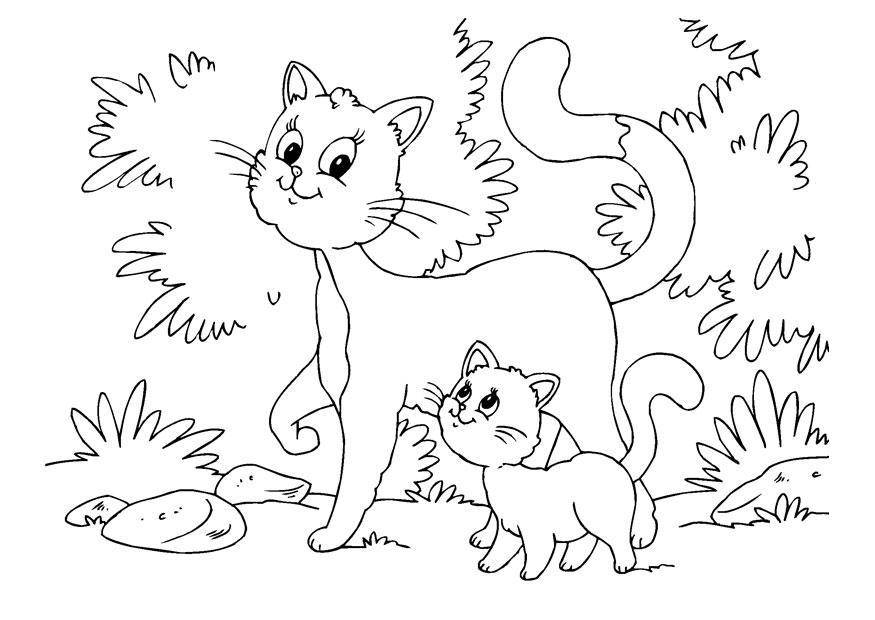 M larbild katt och kattunge Bild 22643
