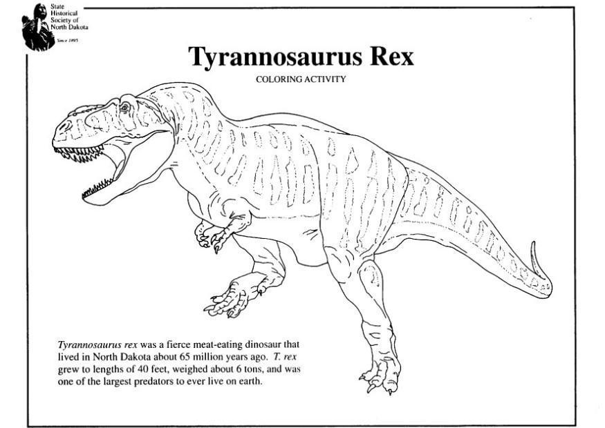 M larbild t rex bild 7965 - Coloriage dinosaure tyrex ...