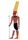 bild Amun