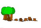 bild avskogning