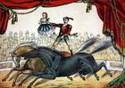 bild cirkus