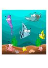 bild fisk