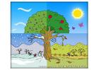 bild fyra årstider