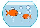 bild guldfisk