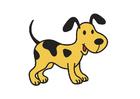 bild hund