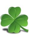 bild irländsk klöver - Shamrock