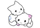 bild kattungar