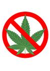 bild marijuana förbjudet