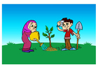 bild plantera ett träd