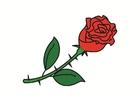 bild ros