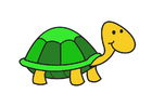 bild sköldpadda