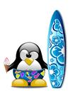 bild surfing