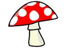bild svamp
