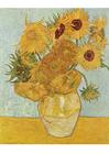 bild Vincent Van Gogh - Solrosor