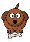 bild z1 - hund