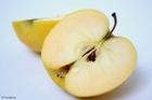 Foto äpple