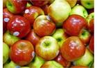 Foto äpplen