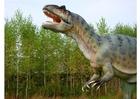 Foto Allosaurus replik