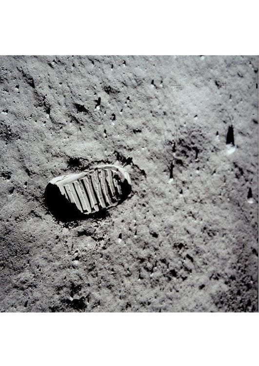 första på månen