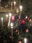 Foto julgran med ljus