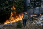 Foto skogsbrand