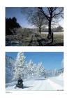 Foto Vinter1