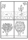 Målarbild äppelträdets utveckling