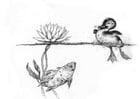 Målarbild anka och fisk