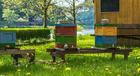 Målarbild bikupa