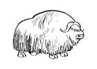 Målarbild bisonoxe