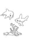 Målarbild delfin och haj