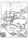 Målarbild delfiner 3