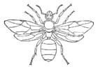 Målarbild drottning myra