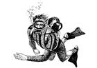 Målarbild dykare