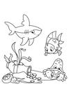 Målarbild fisk med haj och krabba