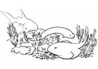 Målarbild fiskar och haj