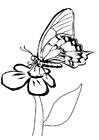 Målarbild fjäril pÃ¥ blomma