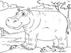 Målarbild flodhäst