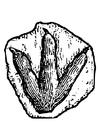 Målarbild fotavtryck av dinosaur