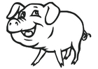 Målarbild gris
