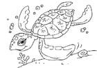 Målarbild havssköldpadda