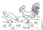 Målarbild höna, tupp och kycklingar