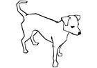 Målarbild hund