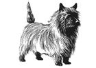 Målarbild hund - Terrier
