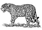 Målarbild jaguar
